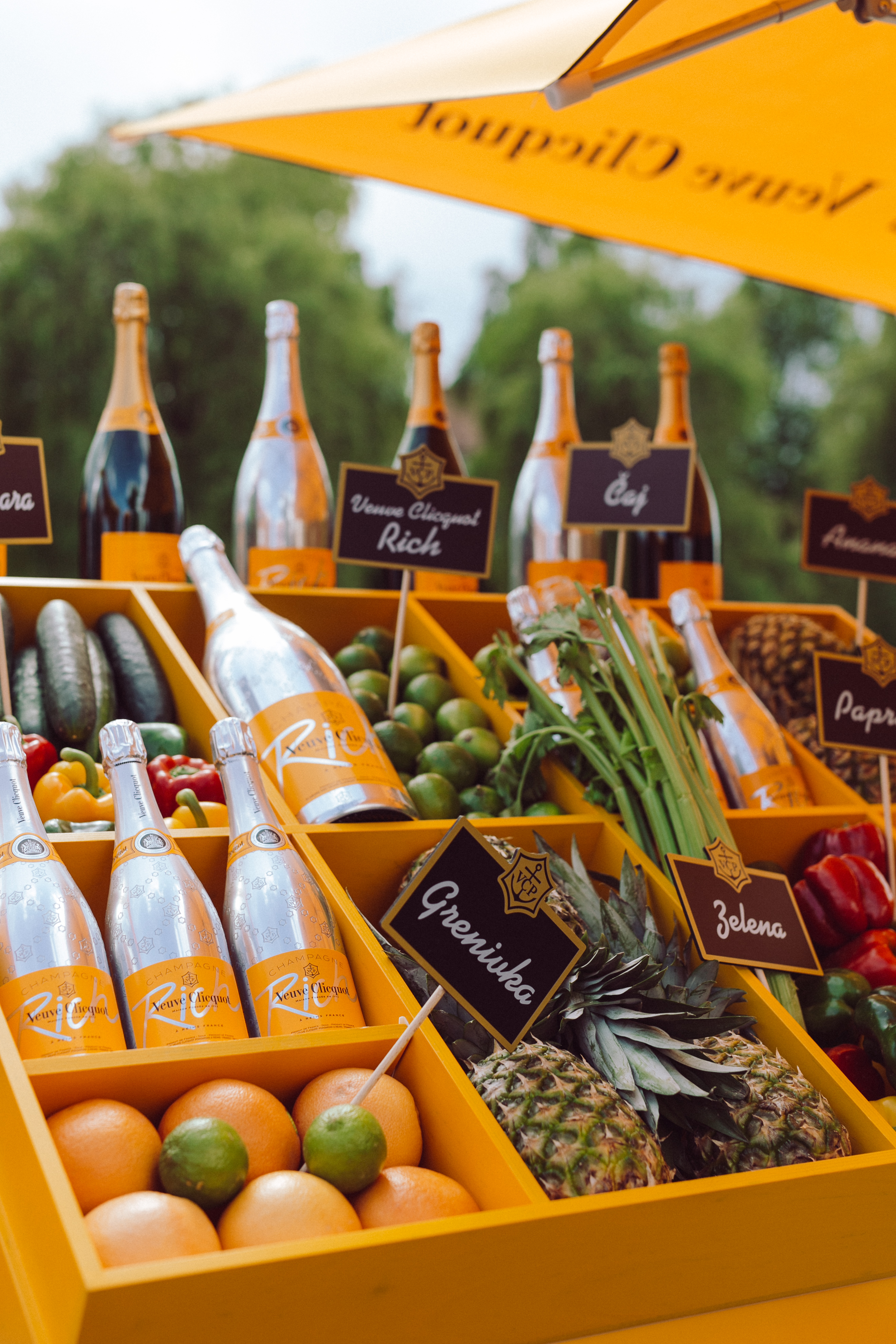 veuve_clicquot_rich_26_5_2016_-_photo_ziga_intihar-110.jpg